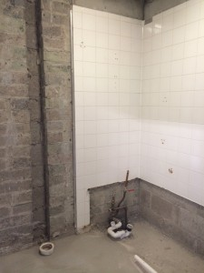 Remove old toilet and bath